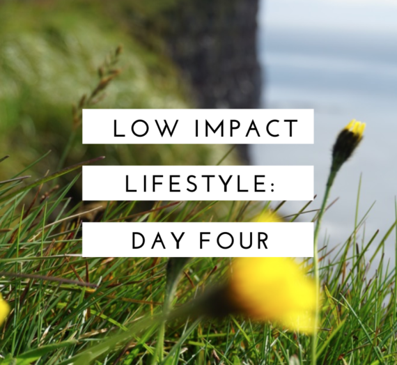Low Impact Lifestyle: Day 4