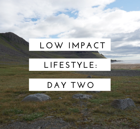 Low Impact Lifestyle: Day 2