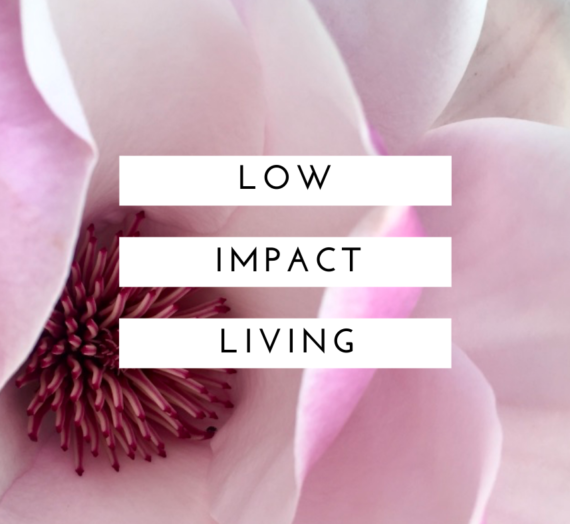 Low impact living: Why bother?