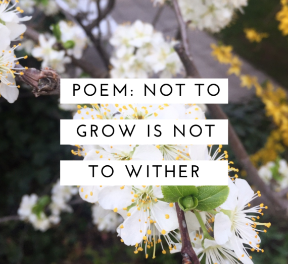 Not to grow is not to wither