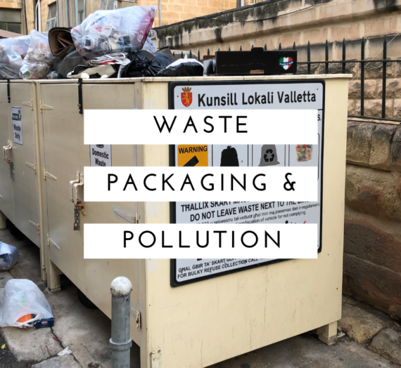 Waste, packaging and pollution: Whose problem is it?