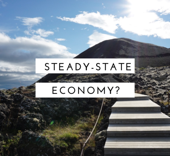 How would a steady-state economy work?