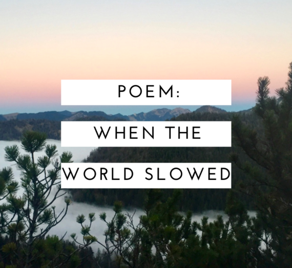 When the world slowed…